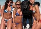 Crazy three hot babes with gorgeous bodies being silly