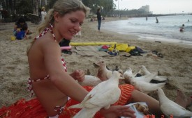 640-Hot-chick-wearing-sexy-swimsuit-have-fun-with-pigeons.jpg